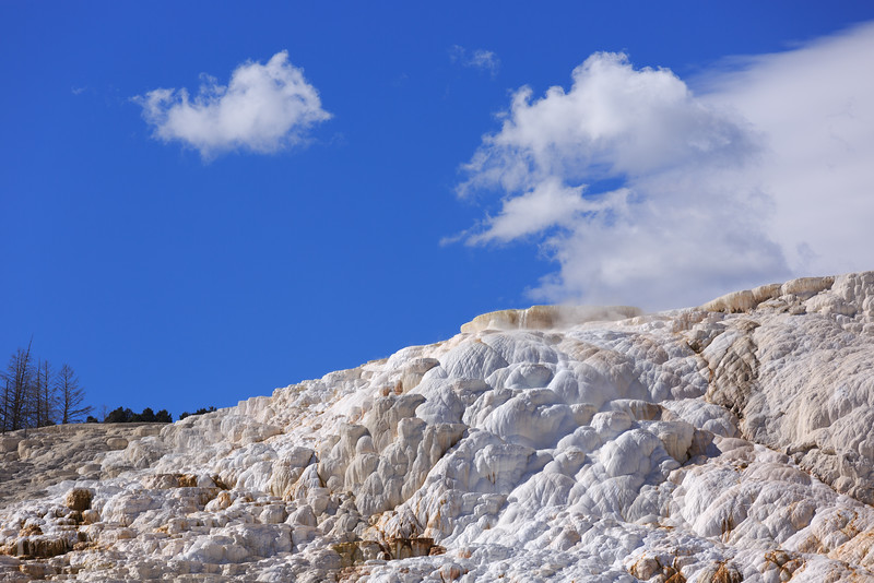 Mammoth Hot Springs 003