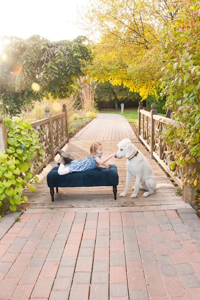 DogDays_Dogs_Gardens_2015_PIC_6412.jpg