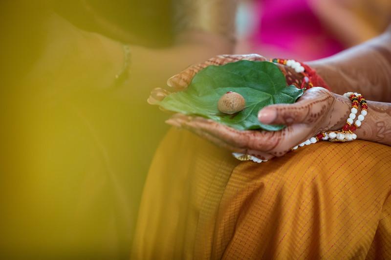 Hina_Pithi_Pooja-144.jpg