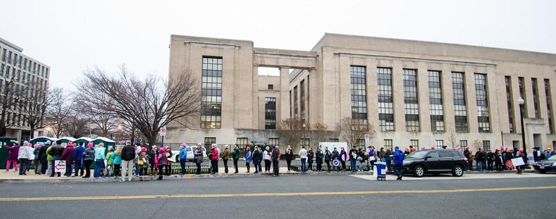 Women's March - Washington D.C. (1-21-17)