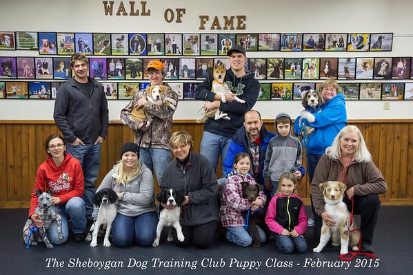 Puppy Class - February 2015