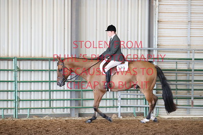 5. HUNTER UNDER SADDLE - ADULTS