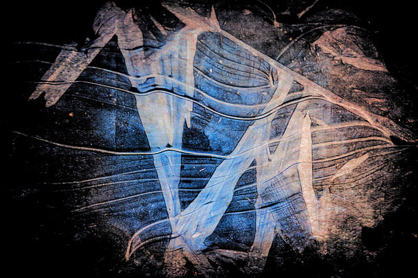 Visions : Abstracts
