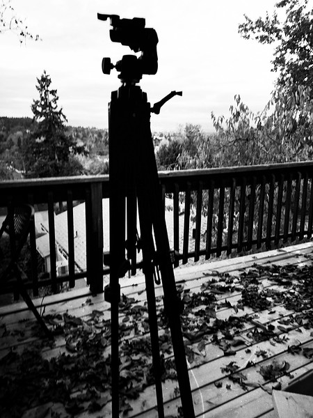 lonliness is an empty tripod