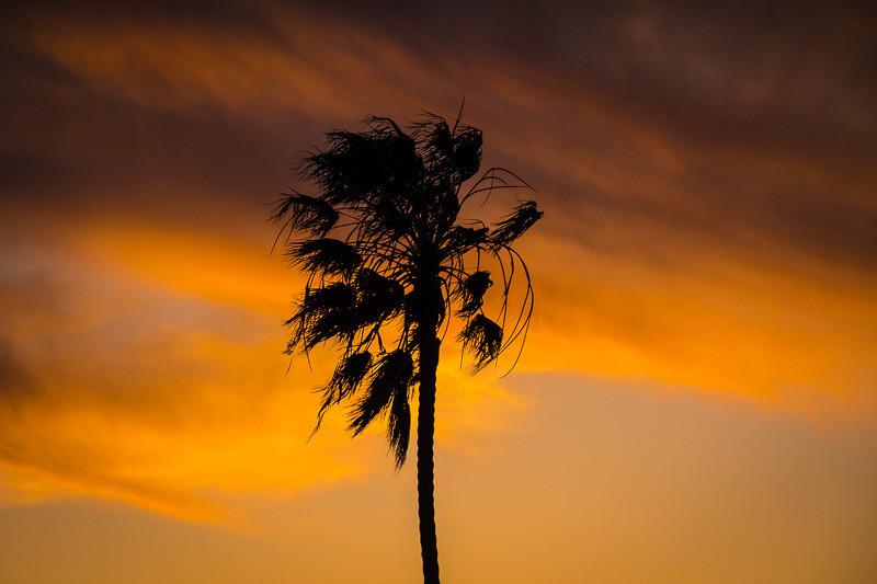 feb 27 - sunset.jpg