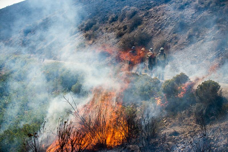 Aug 25 FIRE OPERATIONS-13.jpg
