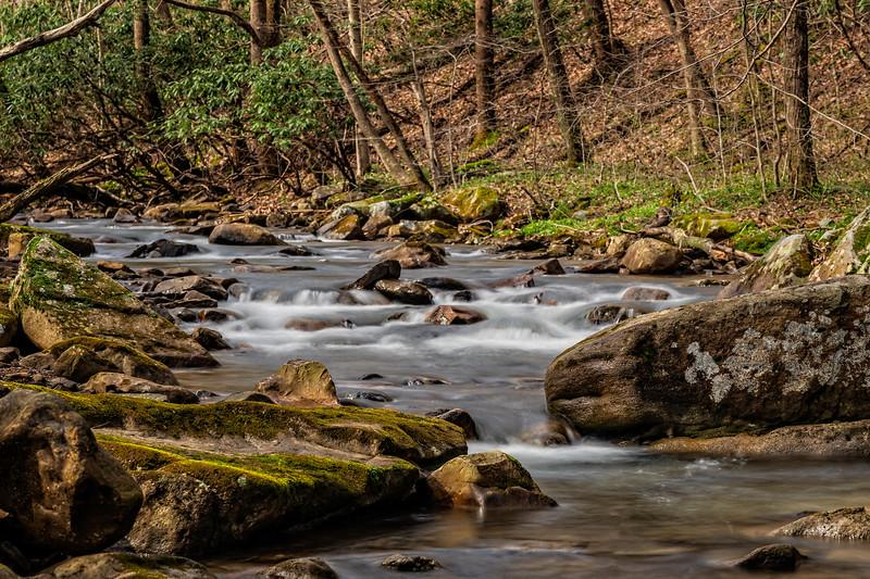 Johnaton Run Creek