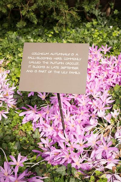 Chicago Botanic Garden 041.jpg