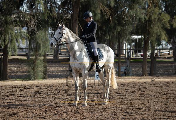 Rider 252
