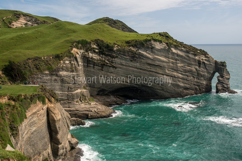 Slightly above the Cape Farewell Lookout  (centre left where the people are)