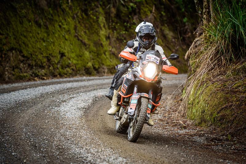 2018 KTM New Zealand Adventure Rallye - Northland (467).jpg