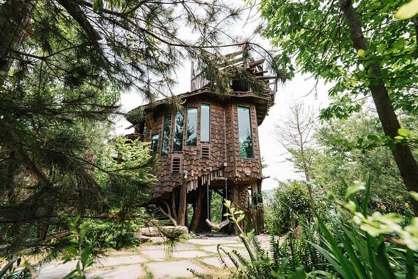 樹屋|特色民宿