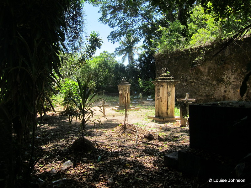 Sunlight in the cemetery - Baía de Camamu, Bahia, Brazil