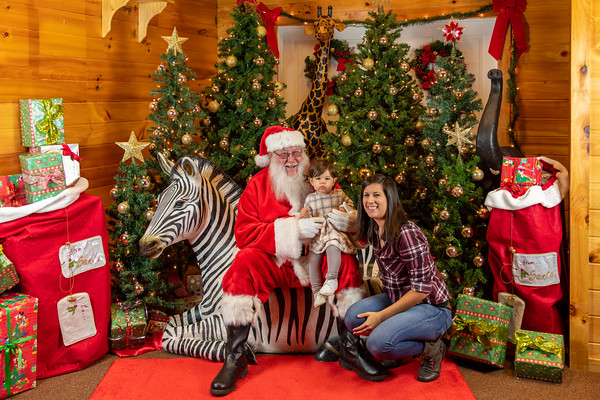 2019 Brights Zoo Christmas