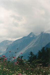 1999-05 Switzerland