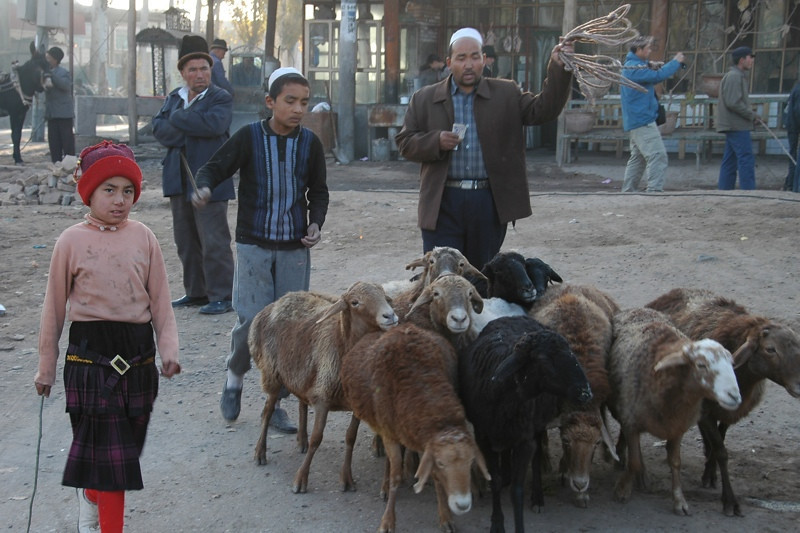 Kashgar Animal Market: Goats - China