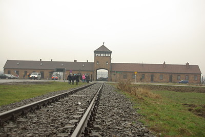 Auschwitz & Majdanek concentration camps