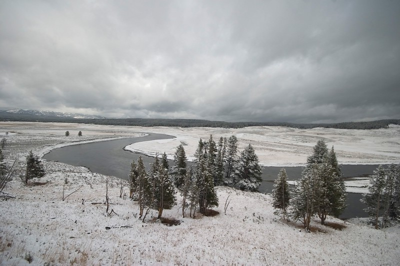 Yellowstone River flows through the Hayden Valley [September; Yellowstone National Park, Wyoming]