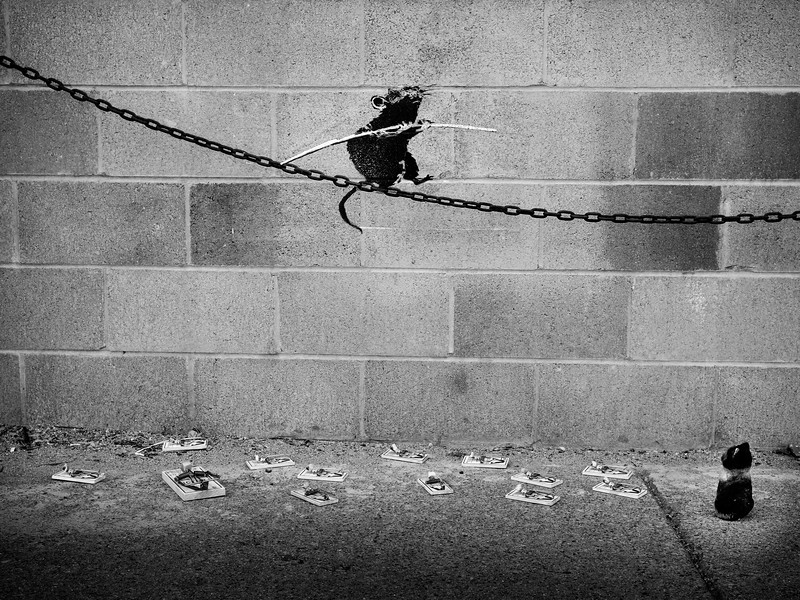 the Banksy mouse