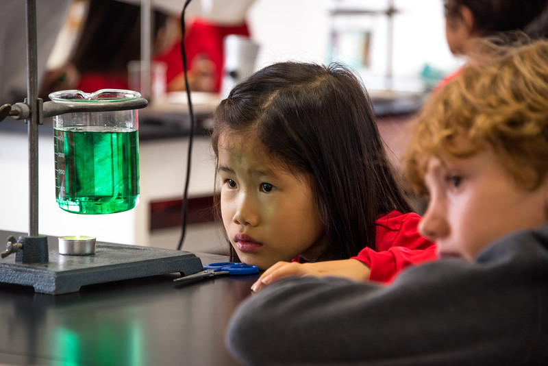 Gr. 2 Science Experiment-untitled shoot-YIS_6870-2018-19.jpg