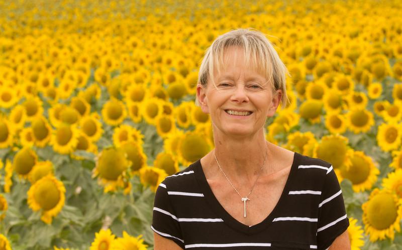 sun flowers-3900.jpg
