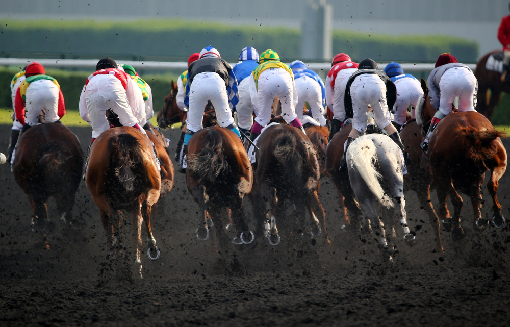 . Jockeys compete in the Dubai Kahayla Classic race held on Dubai World Cup day on March 29, 2013 at Meydan racecourse in Dubai. A cosmopolitan gathering of horses from seven different countries contest the US$10 million Emirates Dubai World Cup at Meydan racecourse.  (MARWAN NAAMANI/AFP/Getty Images)