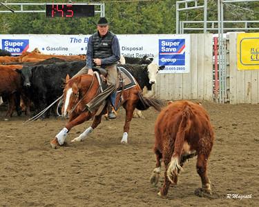 ZRNHELTS 2017 $5K NOVICE HORSE NON PRO
