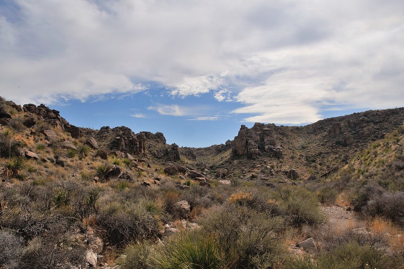 BBP_6664_205_Big Bend 2017.jpg