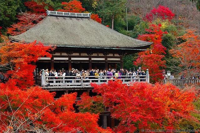 Kiyomizudera Temple image copyright Damien Douxchamps