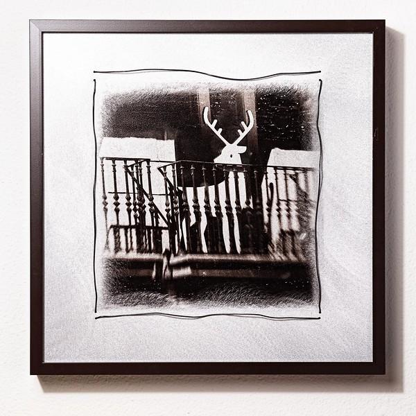 Buck on a Balcony