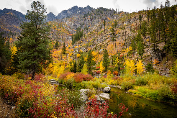 Colors of Fall, October 2018