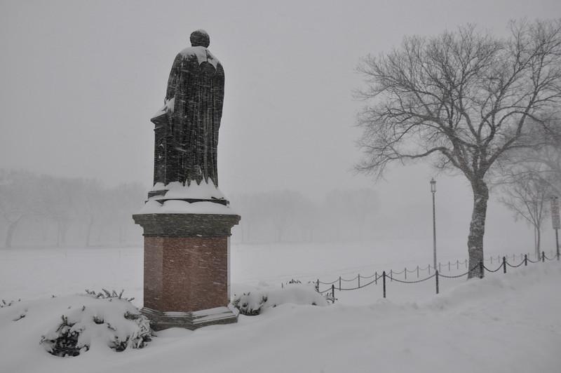snow 107.JPG