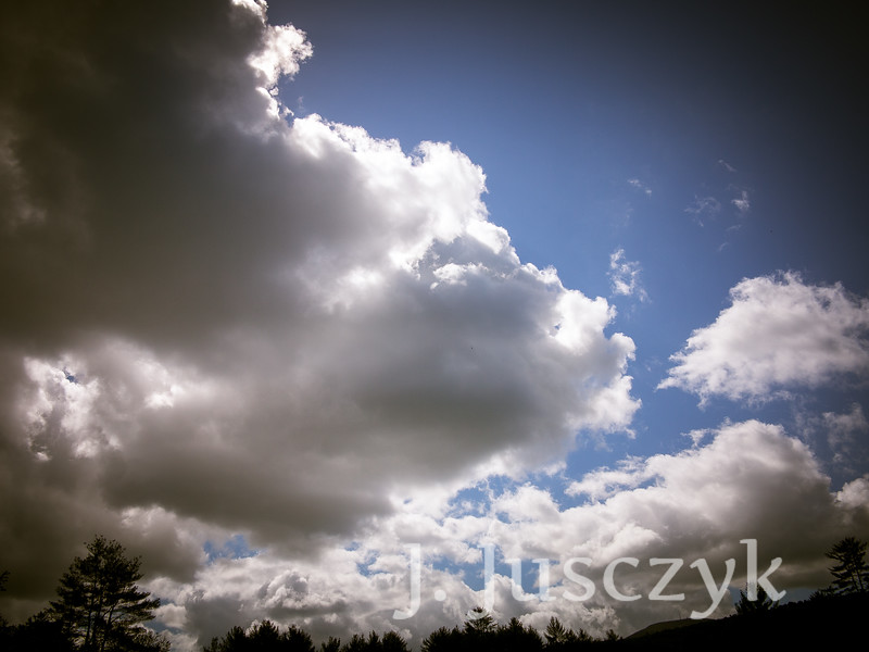 Jusczyk2021-2087.jpg