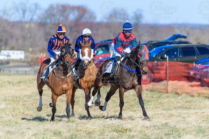 Race 8 VHBPA Flat $2000 Purse