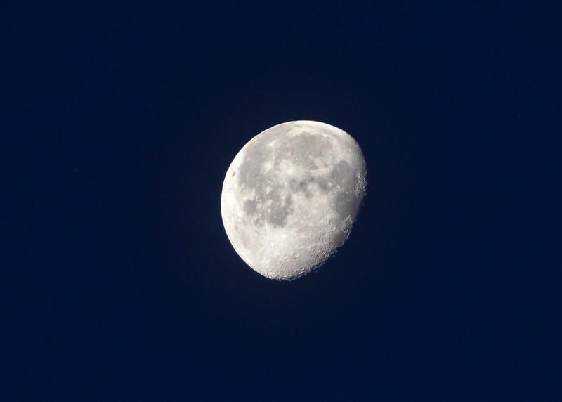 NEA_1238-7x5-Moon.jpg