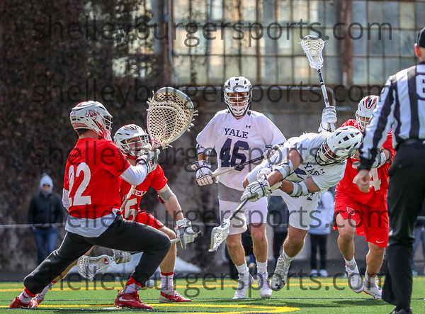 Yale vs Cornell MLax  2019