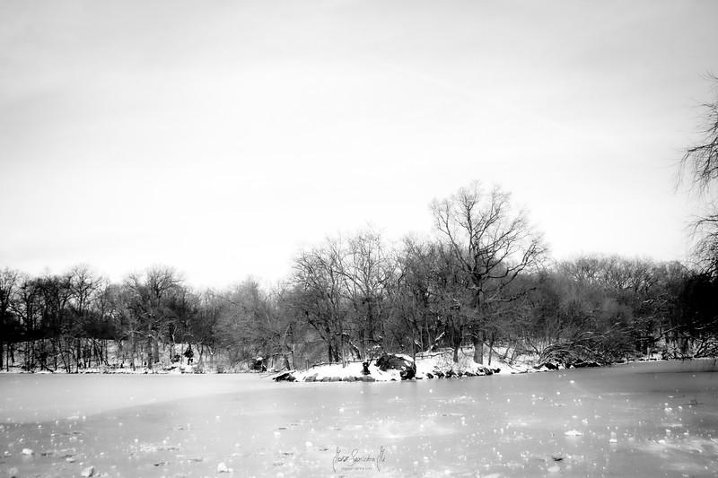 winter-lake-nyc-central-park-photographer-newark-new-jersey-jorge-sarmiento-jr-IMG_7384-blanck-and-white.jpg