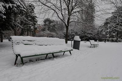2010 Parc Bertrand Winter