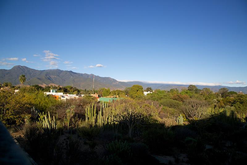 Roewe_Mexico 106.jpg