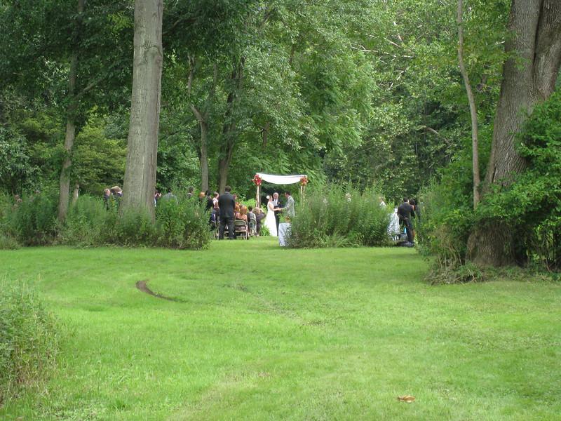 wedding_field_view.JPG