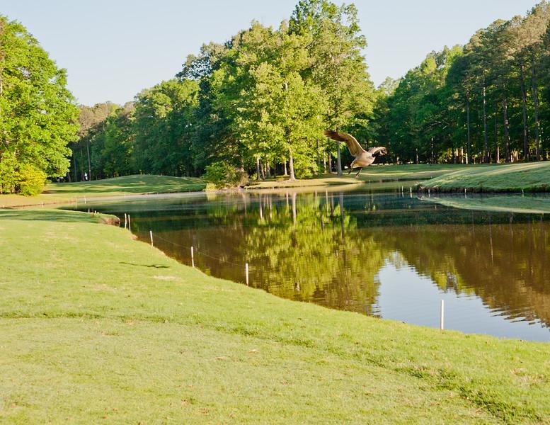 Lochmere Golf Course