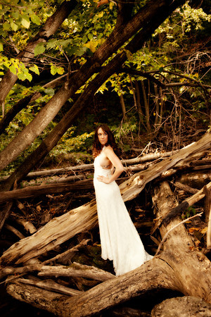 Melissa Trash the Dress