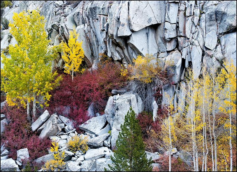 Fall Palate on Granite.jpg