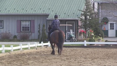 TSRC 2020-12-12 Wildfire Farm Video