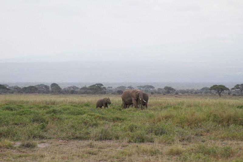 Kenya 2019 #2 424.JPG