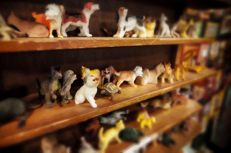 toy animals.jpg
