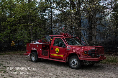 05/10/2018, Woods, Millville City, Cumberland County NJ, Behind 2201 S. 2nd St. Millville Lodge