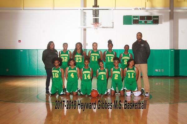 2017-2018 Girls Basketball