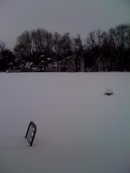 6 Feb 2010