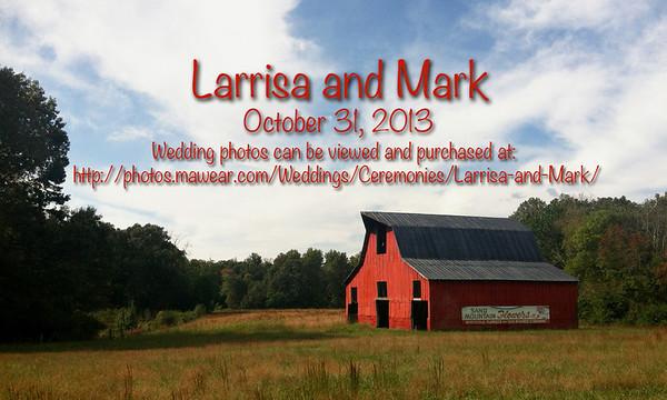 Larrisa and Mark
